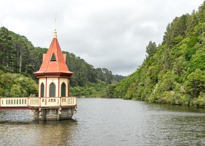 JuliePowell_Zealandia-20