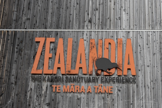 JuliePowell_Zealandia