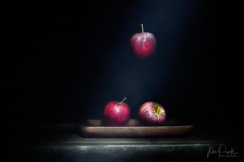 Julie Powell_Newtons Apple
