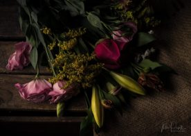 JuliePowell_flowers-10