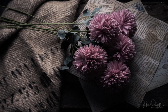 JuliePowell_flowers-13