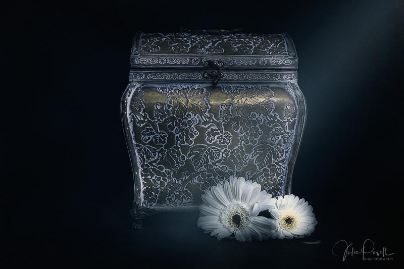 Julie Powell_Pandoras Box