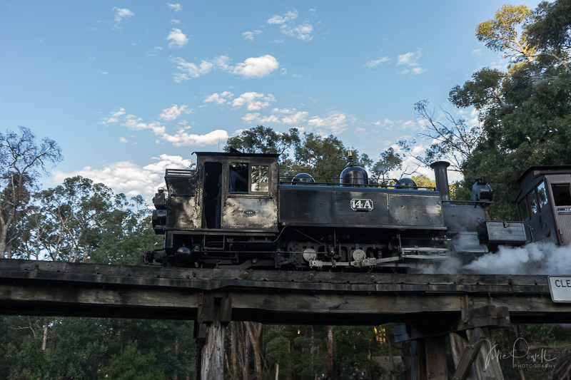 Julie Powell_Puffing Billy