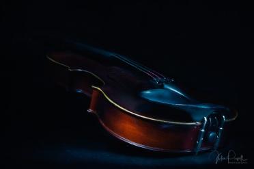 Julie Powell_Violin-3