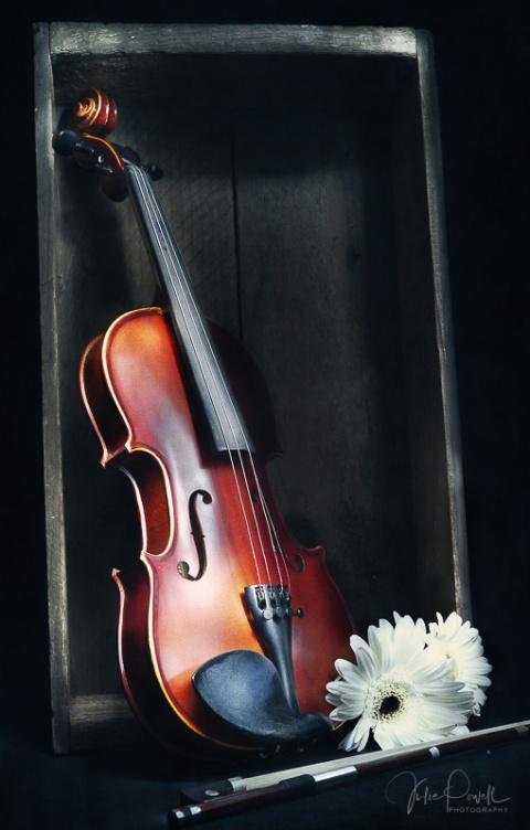 Julie Powell_Violin
