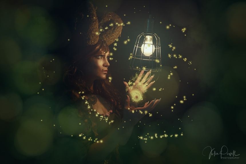 Julie Powell_Firefly Magic