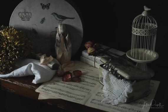 Julie Powell_Ballet Slippers-10