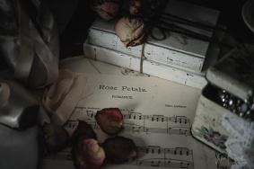 Julie Powell_Ballet Slippers-11