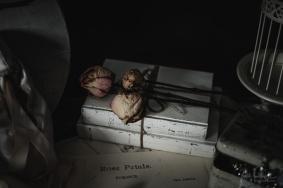 Julie Powell_Ballet Slippers-12