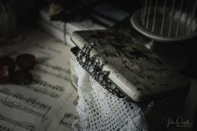 Julie Powell_Ballet Slippers-13