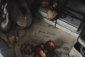 Julie Powell_Ballet Slippers-4