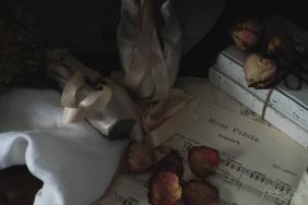 Julie Powell_Ballet Slippers-8