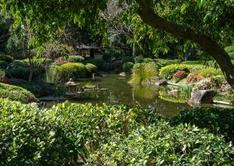 Julie Powell_Gardens-33