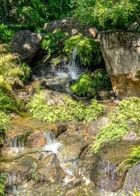 Julie Powell_Gardens-34