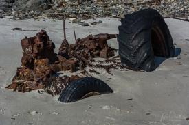 Julie Powell_Snelling Beach-12
