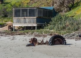 Julie Powell_Snelling Beach-14