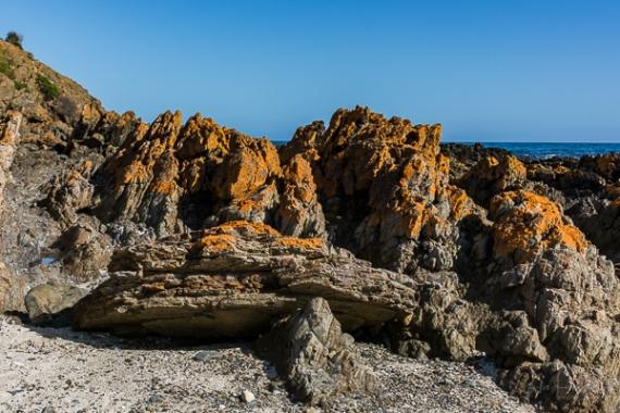 Julie Powell_Snelling Beach-23