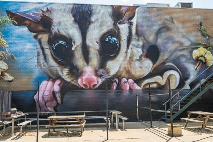 Street Art by Dvate