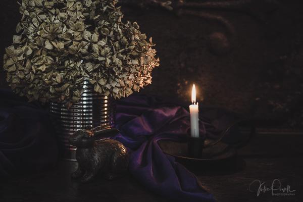 Julie Powell_Stills-2