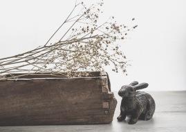 JuliePowell_Bunny-3