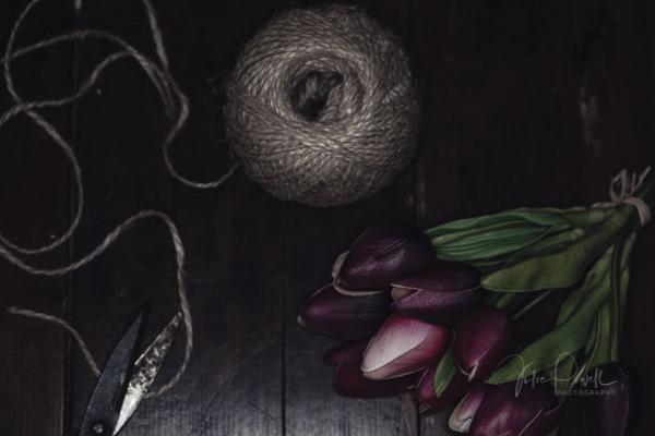 JuliePowell_Tulips-1