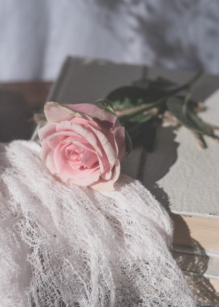 JuliePowell_Roses-15