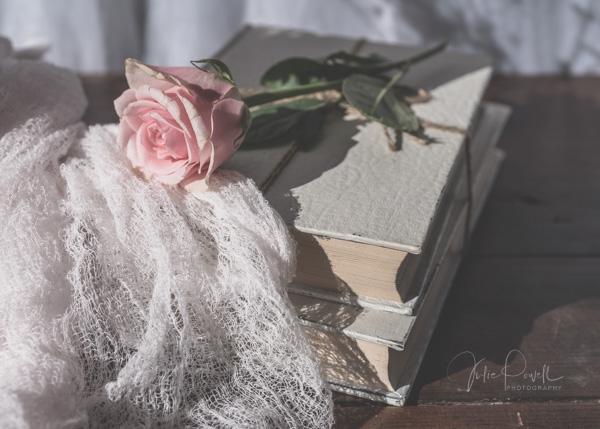 JuliePowell_Roses-16