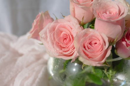 JuliePowell_Roses-4